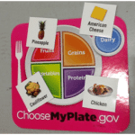 Choose My Plate Picture - Nutrition in PE